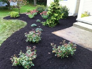 Brennan Landscaping specializes in landscape design, installation, and maintenance